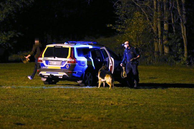 Rånare greps i Skogsängen